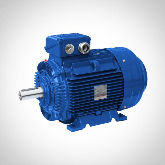 IE4 AC Motors Cast Iron